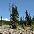 First impression of Mount Baker (10,781').- Park Butte