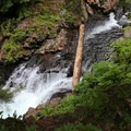 South Fork of the Snoqualmie River.- Franklin Falls Trail