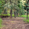Typical campsite. - Huckleberry Mountain Campground