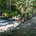Creek crossing.- Annette Lake