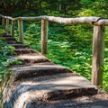 A carefully crafted bridge.- Annette Lake