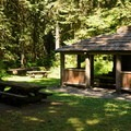 The day use picnic area at Douglas Fir Campground.- Douglas Fir Campground