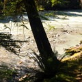 North Fork of the Nooksack River from Douglas Fir Campground.- Douglas Fir Campground