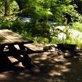 Riverside site.- Douglas Fir Campground