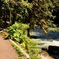 Beginning of the Horseshoe Bend Trail.- Horseshoe Bend Trail