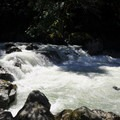 The North Fork of the Nooksack River rushes around boulders.- Horseshoe Bend Trail