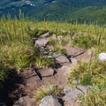 The view back down the steep trail.- Bandera Mountain Hike