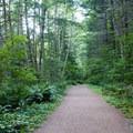 Easy start on the Ira Springs Trail.- Mason Lake