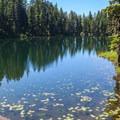 Little Mason Lake.- Mason Lake