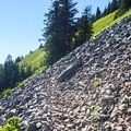 The trail to Mount Defiance leads through a rock field.- Mount Defiance