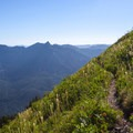 Beargrass flowers (Xerophyllum tenax) and views to the west.- Mount Defiance