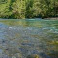 Beautiful Oregon scenery from McKenzie Bridge Campground.- McKenzie Bridge Campground