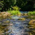 The McKenzie River.- McKenzie Bridge Campground