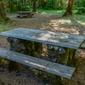 Picnic table in the day use area.- McKenzie Bridge Campground