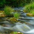 The McKenzie River near the day use area.- McKenzie Bridge Campground