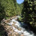 North Fork of the Nooksack River above the falls.- Nooksack Falls