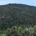 The North Fork of the Stanislaus River Valley.- Sourgrass Day Use Area
