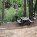Riverside picnic sites at the Sourgrass Day Use Area.- Sourgrass Day Use Area