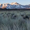 Sagebrush and Sierra summits from Wild Willy's Hot Springs.- Wild Willy's Hot Springs