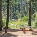 North Grove Campground.- Calaveras Big Trees State Park