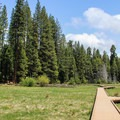 The meadow at North Grove Campground.- Calaveras Big Trees State Park
