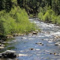 North Fork of the Stanislaus River.- Calaveras Big Trees State Park