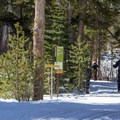 Nordic trails near the Tamarack Lodge.- Tamarack Lodge