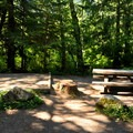 Typical campsite with tent pad at Silver Fir Campground.- Silver Fir Campground