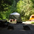 Typical campsite at Silver Fir Campground.- Silver Fir Campground