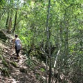 The trail dips in and out of wooded pockets that provide welcome shade on hot days.- Table Rock