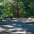 A typical campsite at Tinkham Campground.- Tinkham Campground