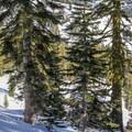 The route to Ridge Lakes.- Ridge Lakes Winter Camp
