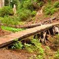 Bridge along Anderson-Watson Lakes Trail.- Anderson + Watson Lakes