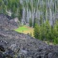 A small meadow where the lava stopped.- Lava River National Recreation Trail