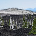 Insects and fire destroyed this forrest, and it is now a ghostly image of its former self.- Lava River National Recreation Trail