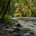 The South Santiam River flows by all of the recommended sites.- Trout Creek Campground