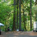 A typical site in Trout Creek Campground.- Trout Creek Campground