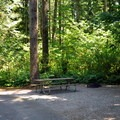 Typical site in the east loop.- Rasar State Park Campground