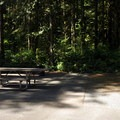 ADA site in the east loop.- Rasar State Park Campground