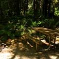 Typical hiker/biker primitive site.- Rasar State Park Campground