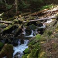A small cascade along the Salmon River Trail.- Upper Salmon River Trail