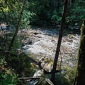 Salmon River.- Upper Salmon River Trail