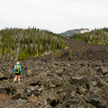 Islands of forest isolated in the lava flows.- Little Belknap Crater