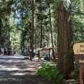 North Fork Campground.- North Fork Campground