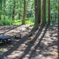 Typical campsite in North Fork Campground.- North Fork Campground