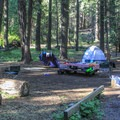 Campsites are mostly shaded by the forest canopy.- North Fork Campground