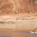 Packed up and ready to paddle on the Green River.- Green River, Labyrinth Canyon