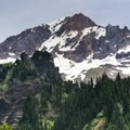 Mount Hood (11,249') on the Muddy Fork hike.- Muddy Fork