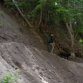 The trail narrows in sections.- Muddy Fork