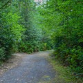 Road through Ludlum Campground.- Ludlum Campground